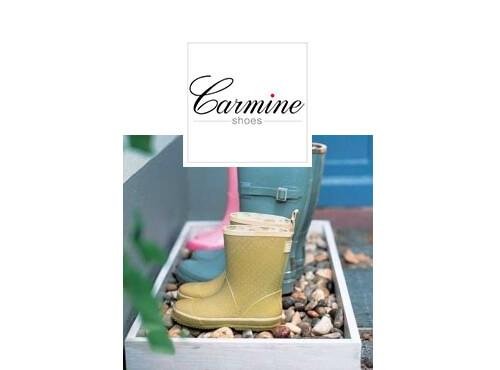 idei-depozitare-pantofi-carmine-cutie-piatra